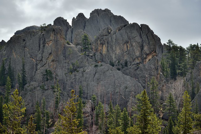 Amazing Rock Formations and Views (Custer State Park)