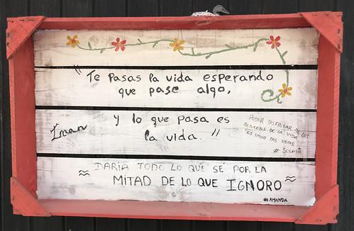 Esos letreros veraniegos con verdades sobre la vida