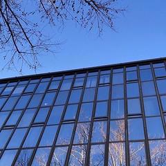 #Buongiorno Sapienza con una foto del Palazzo dei servizi generali di @alessandra_maiuri ・・・ #Repost: «:last_quarter_moon_with_face:» ・・・ #repostSapienza #ImmaginiDallaSapienza di #studentiSapienza #CittàUniversitaria_Sapienza #LuoghiDellaSapienza #Studio