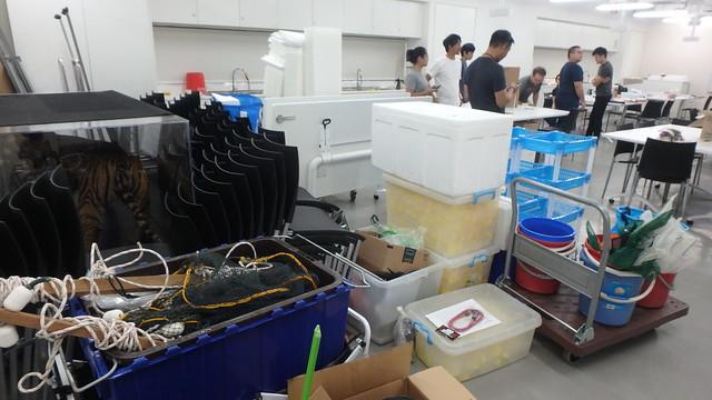 Singapore Marine Fishes Expedition 2019
