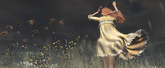 ► ﹌L'éphémère est une poésie d'amour, sur les ailes de la liberté.﹌ ◄