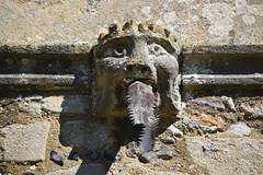 crowned lion gargoyle