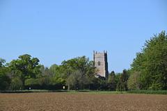 Rougham across spring fields