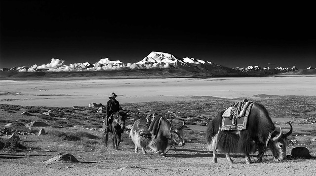 Tibet, near Mount Kailash -2015