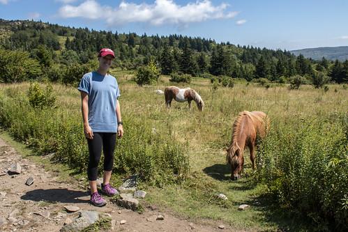 elena with ponies