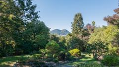 Mount Tauhara - Botanic Garden - Taupo