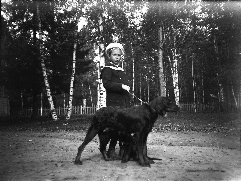 05. 1898. Василий Живаго с собаками