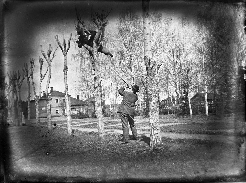 03. 1898. 8 апреля. Ерышевка. Стрельбы. Шутка.