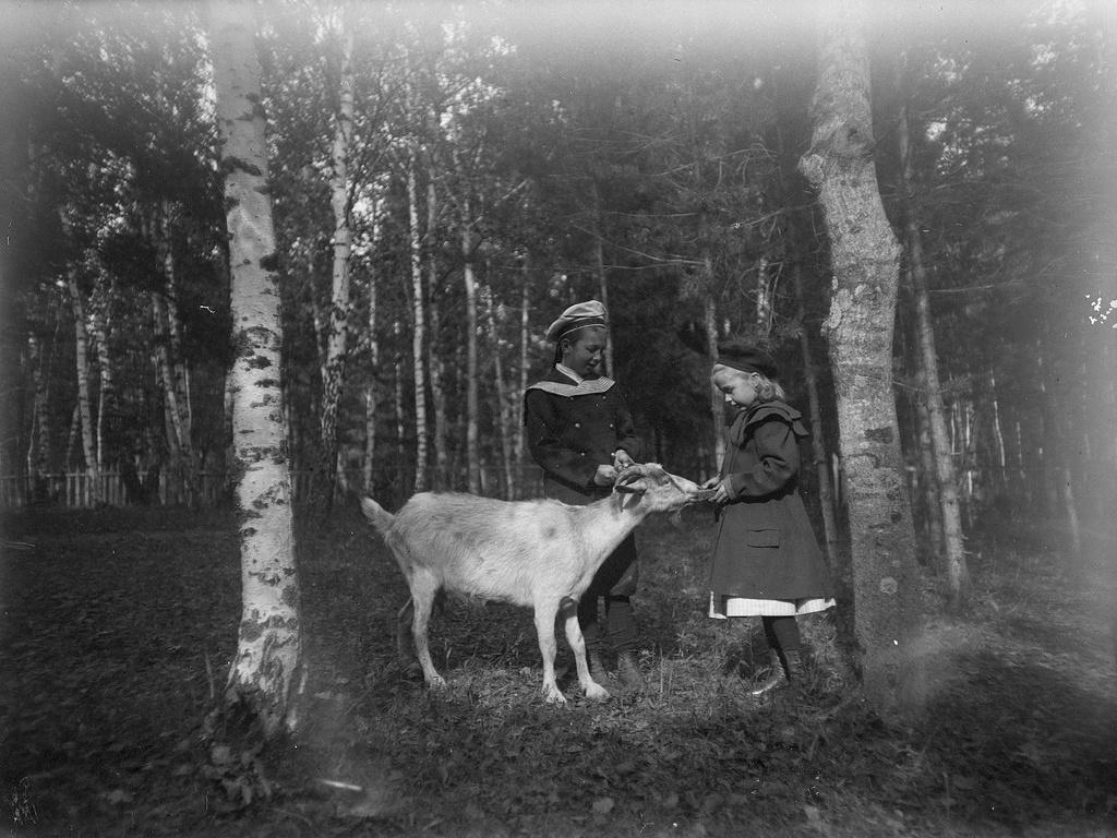 09. 1898. Василий и Наталья Живаго