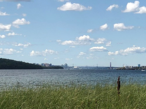 View of Halifax and Dartmouth from McCormacks Beach