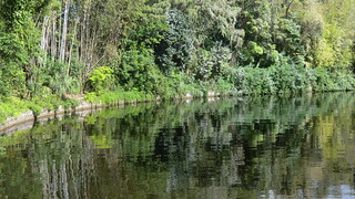 Florida - Orlando: EPCOT Center, Walt Disney World - World Showcase - China: Bamboo framed river