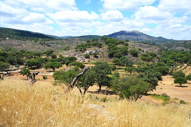 Countryside, Galegos, Alentejo, Portugal