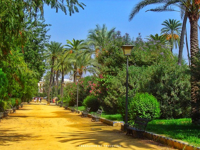 María Luisa Park is a gigantic urban park that encompases the entire southern end of the city. It was designed with Moorish influences so it is filled with gardens, flowers, fountains, palm trees and orange trees. There are also multiple pavilions through
