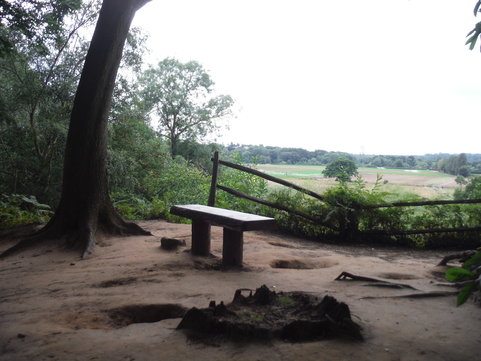 Viewpoint into Mole Valley, The Ledges, West End Common SWC Short Walk 17 - Oxshott Heath, Esher and West End Commons
