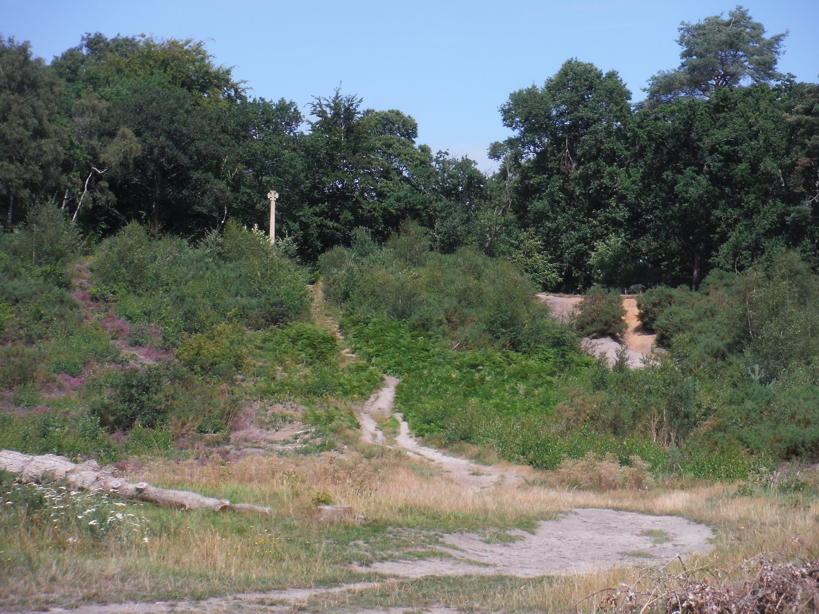 War Memorial on South Slope, Oxshott Heath SWC Short Walk 17 - Oxshott Heath, Esher and West End Commons