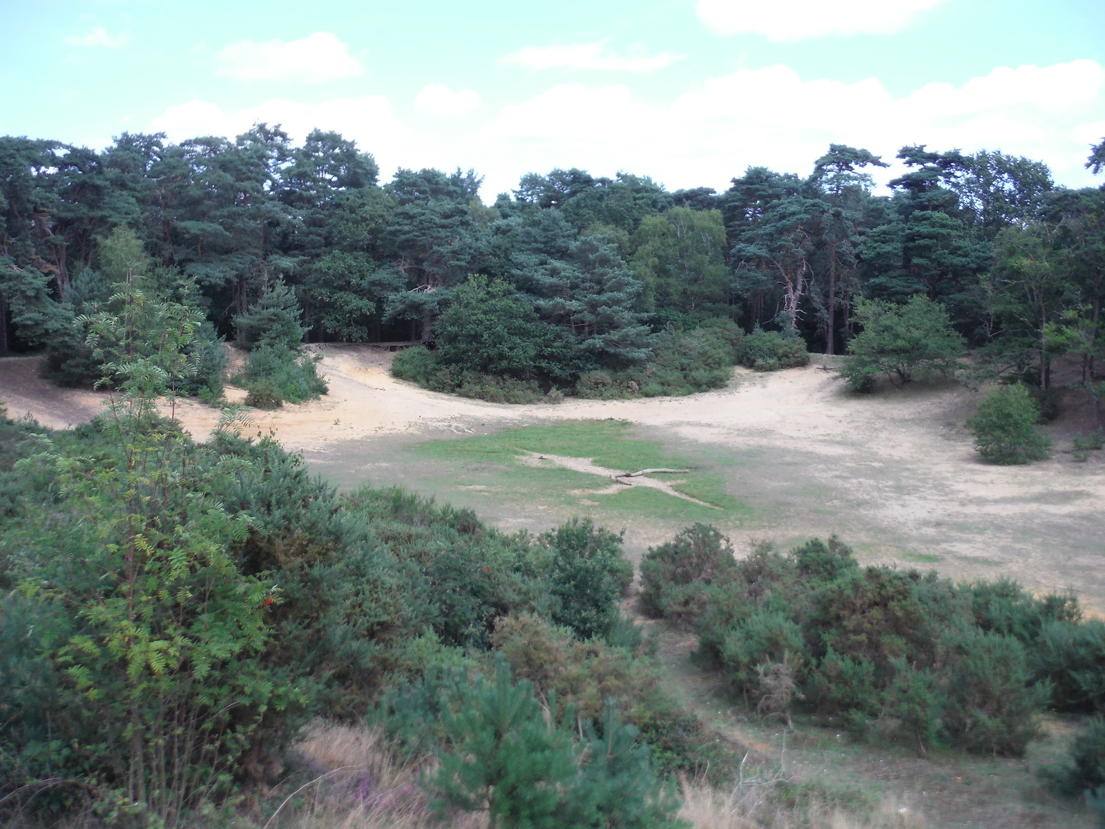 Sandpit, Oxshott Heath SWC Short Walk 17 - Oxshott Heath, Esher and West End Commons