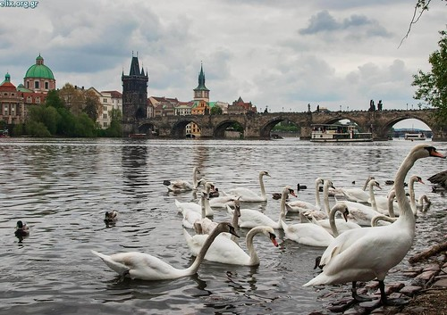 2019-TC-Agents_of_Change-Czech-Giorgos_SID-9