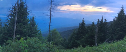 mountain mountains ridges smokies gsm greatsmokymountains gsmnp greatsmokymountainsnationalpark nationalpark nc northcarolina clingmansdome hiking trailside summer july iphone jennypansing pano panoramic