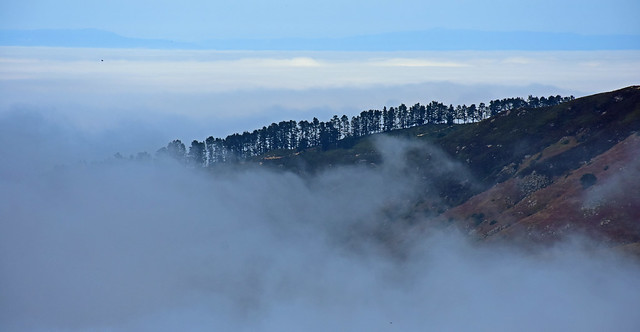 The Foggy Layer - 1008