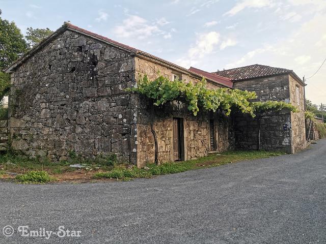 Camino Portugues - Tag 14-081721