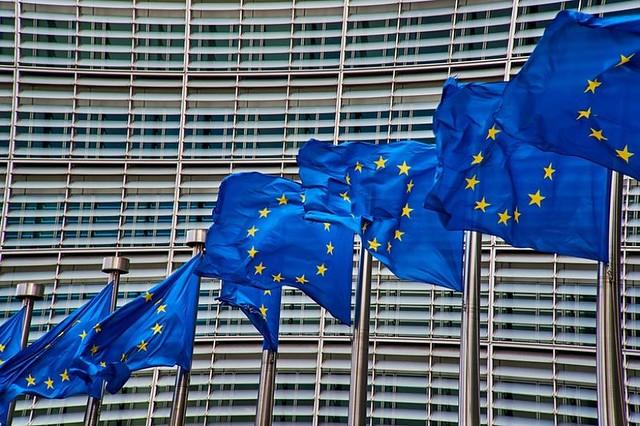 L'UE: principali organi e legame con i diritti umani