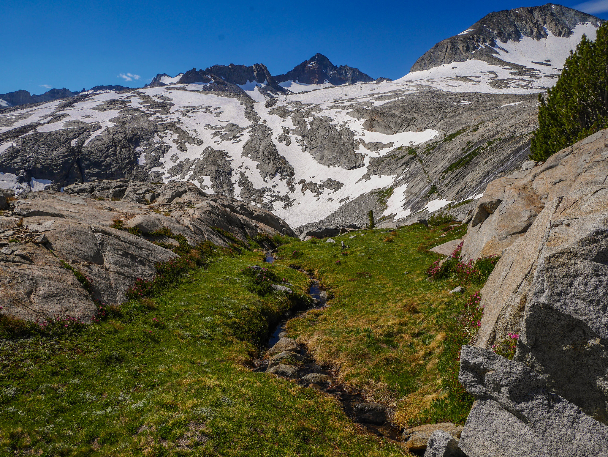 """Ascending a grassy bench to some higher tarns below Amelia Earhardt """"pass"""""""