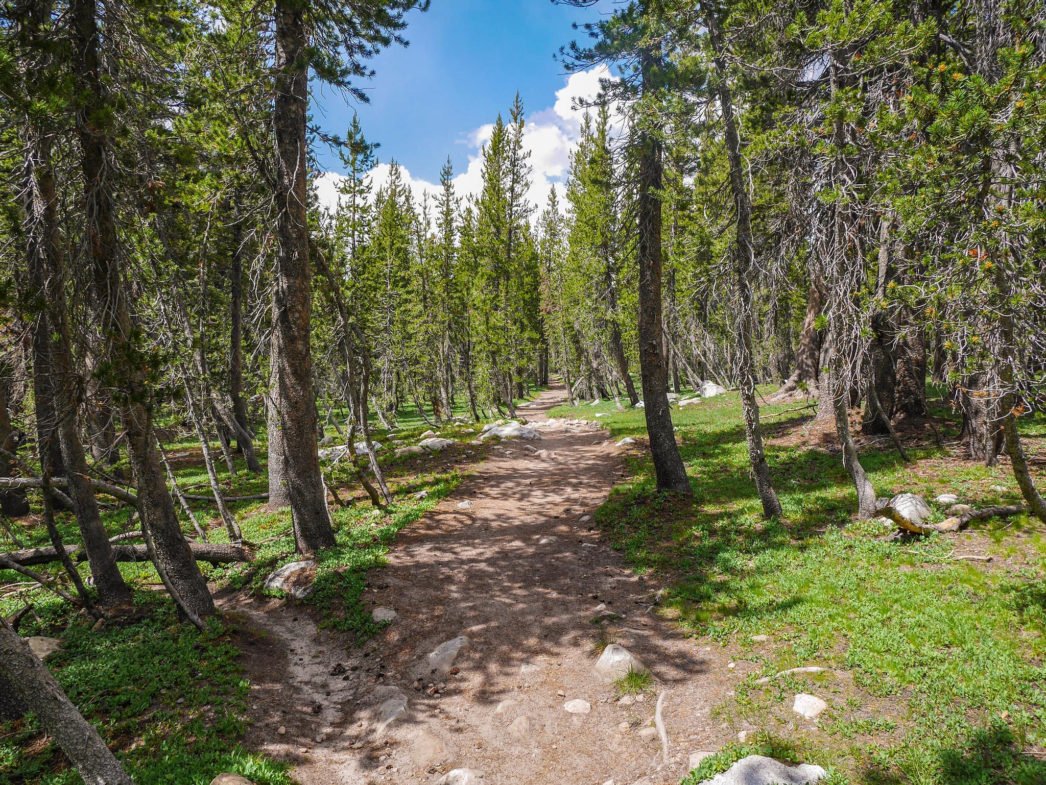 Trail down from Elizabeth Lake