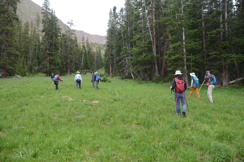 The meadow at Ruby Gulch below  Robeson Peak (4)