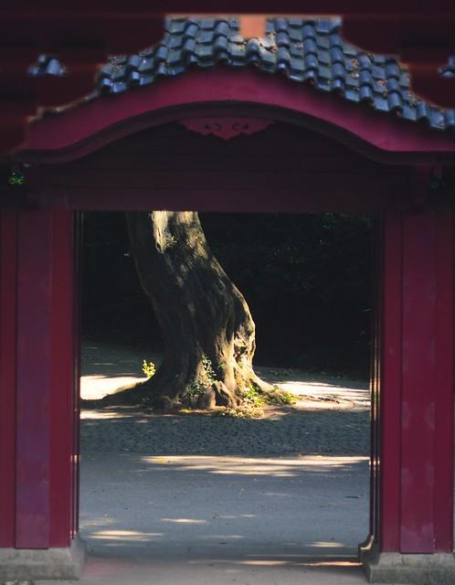 Der Japanische Garten