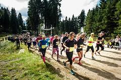 Běhej lesy Jizerská očima vítěze. 12 km pro rychlíky i začátečníky