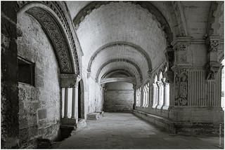 Abbaye de Montmajour - cloisters