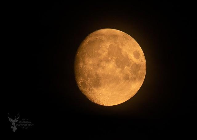 Moon 120819