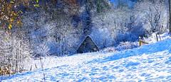 Le Peyras (Vallée de Campan, Hautes-Pyrénées, Fr) - Cabane éclairée par l'hiver10609