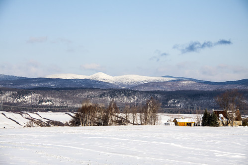 landscape paysage hiver winter montagne mountains tree arbre foret nature natural canada quebec iledorleans