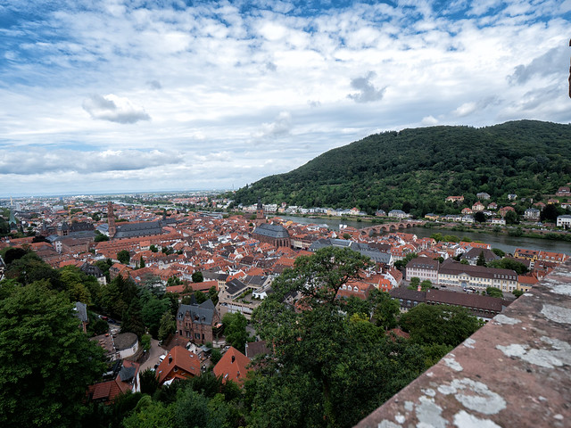 View to Heidelberg / Blick auf Heidelberg