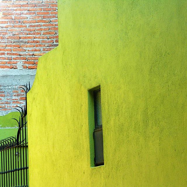 lemon-lime house