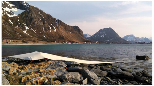 LOFOTEN INTERNATIONAL ART FESTIVAL 2019