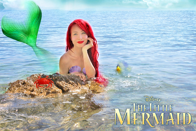 Disney Ariel by Sarina Rose