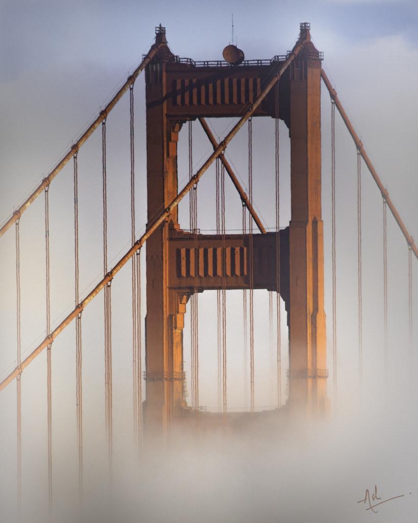 Fogust in SF