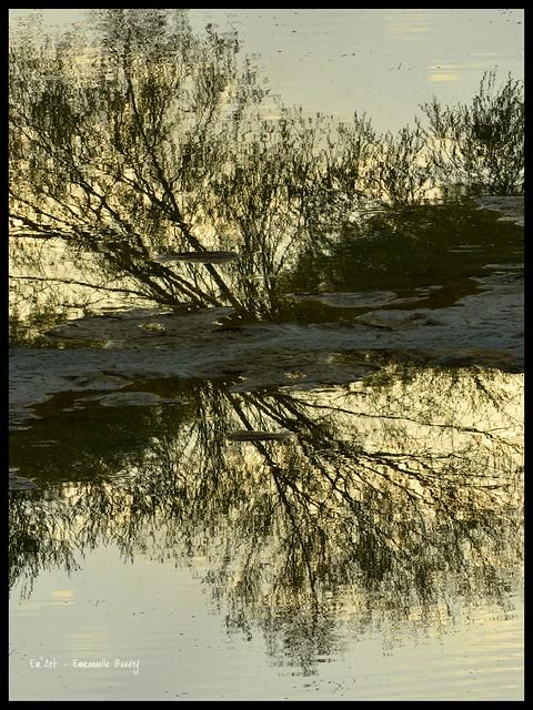 Reflet miroir