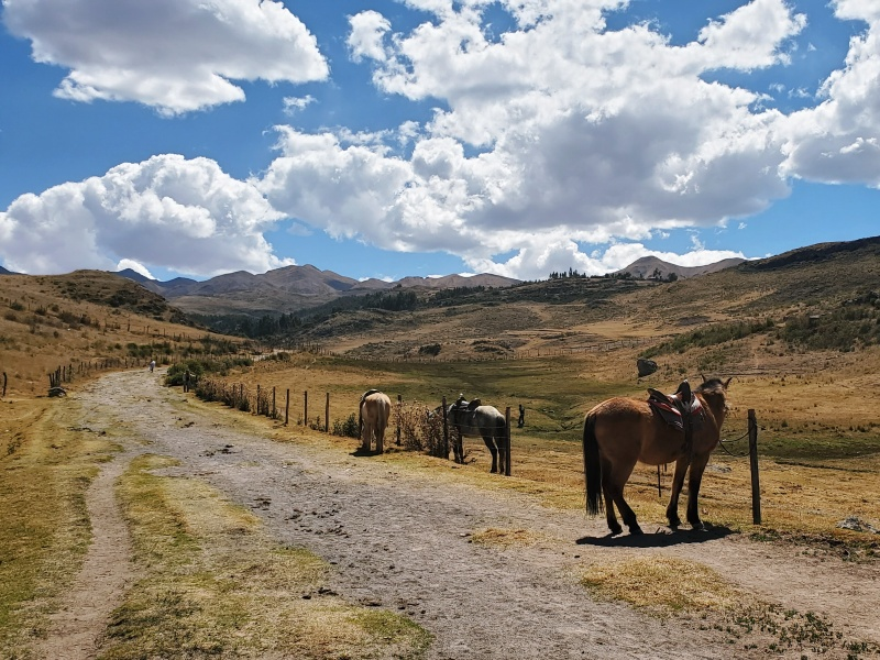 horseback riding Cusco