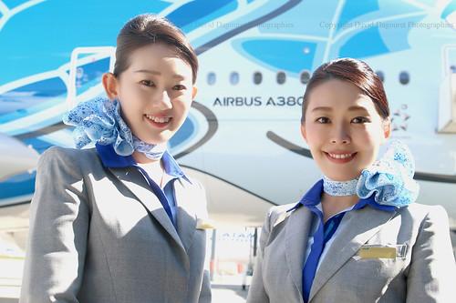 ANA 's stewardesses