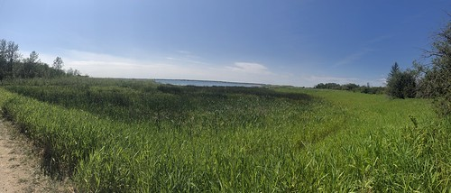 Douglas Provincial Park - Lake Diefenbaker from the trail