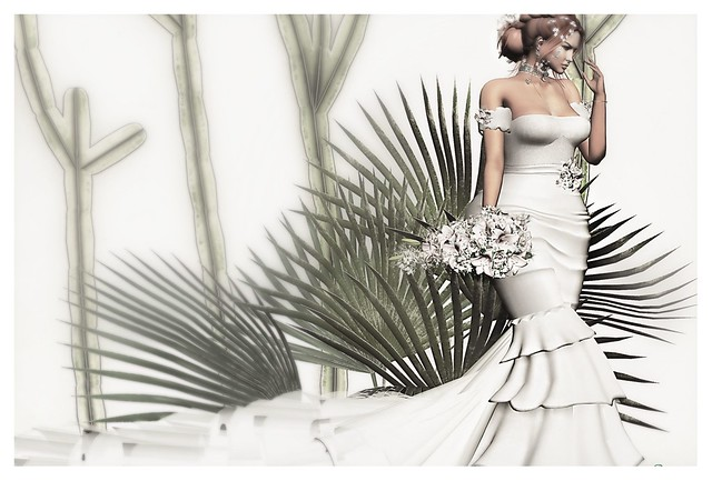 ► ﹌Wedding Fashion.﹌ ◄