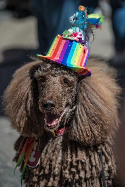 Toronto Pride March