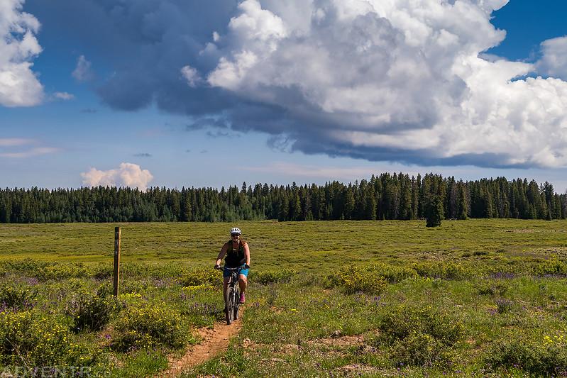 Grand Mesa Riding