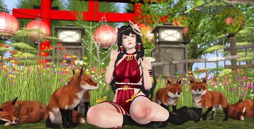 ✿ Red Fox ✿