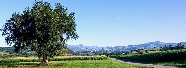Montañas del valle del Miera desde Orejo