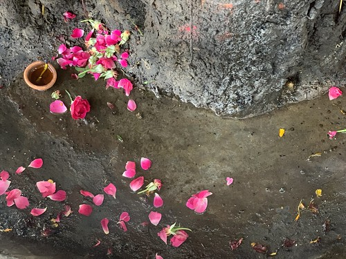 City Faith - A Sacred Tree, Shiv Shani Temple, Basant Lok