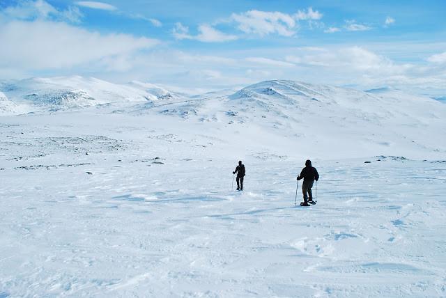 Sneeuwschoentocht Noorwegen - Highlights van Dovrefjell